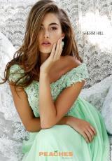 Sherri Hill 50041