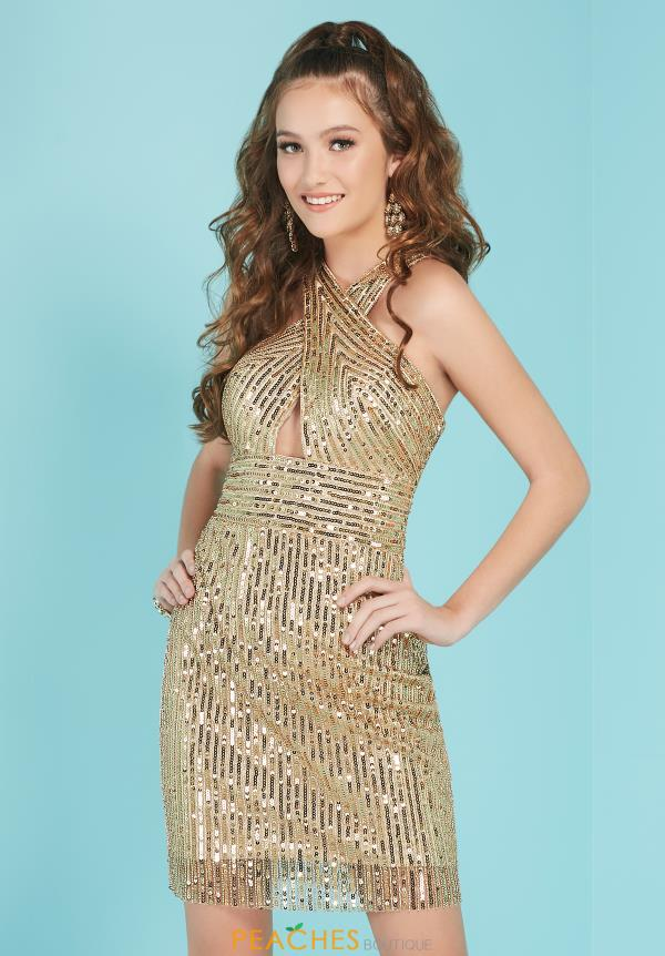 Tiffany Sequins Fitted Dress 27256