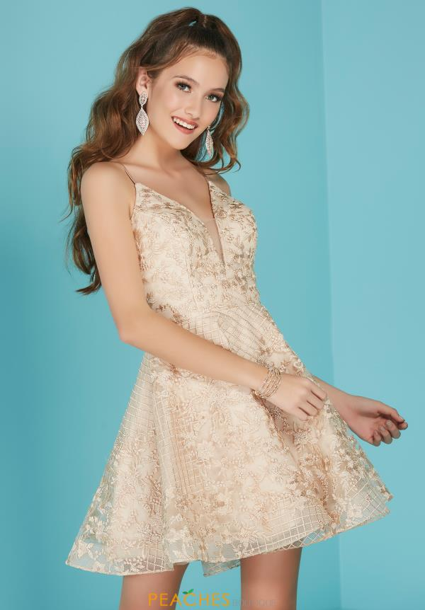 Tiffany Short Lace Dress 27257