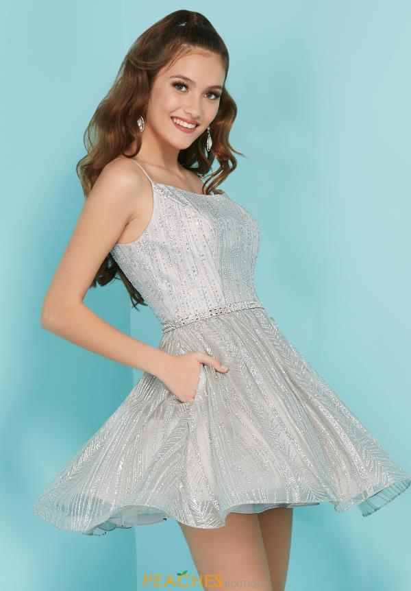 Tiffany Short A Line Dress 27289