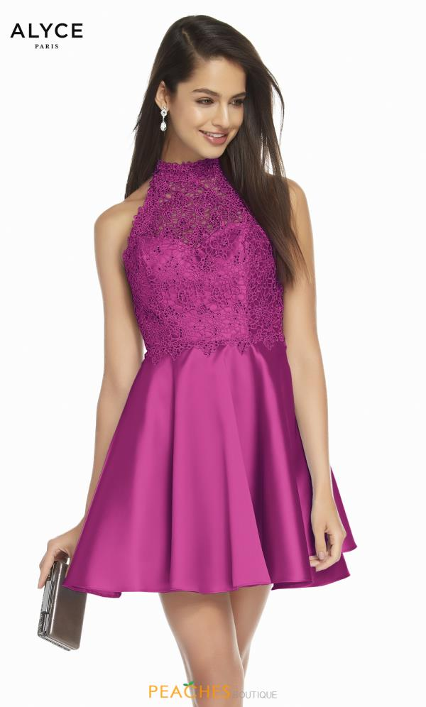 Alyce Paris High Neckline Lace Dress 3847