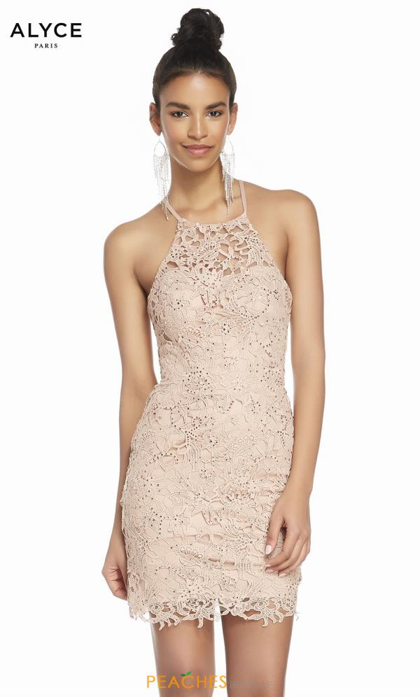 Alyce Paris High Neckline Lace Dress 4140